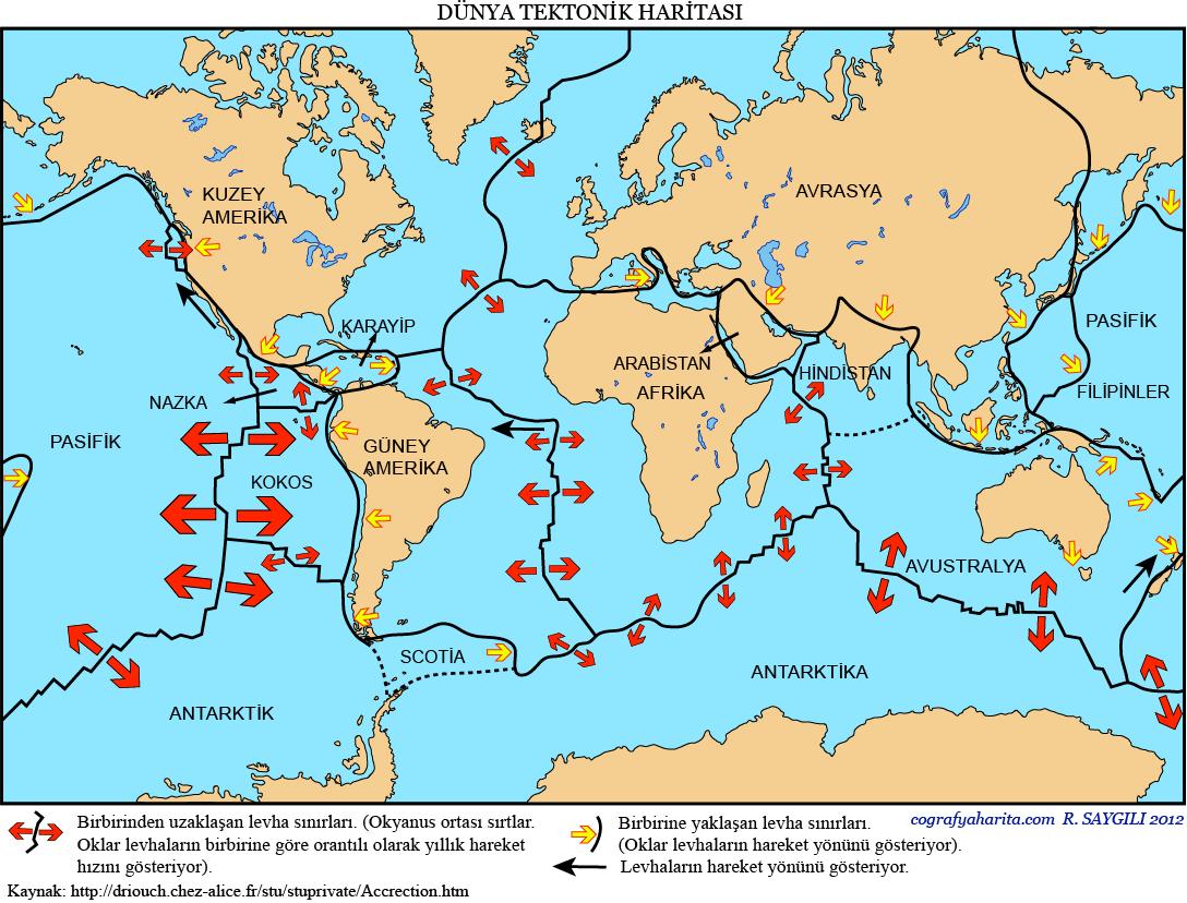 Dünya Tektonik Haritası 2