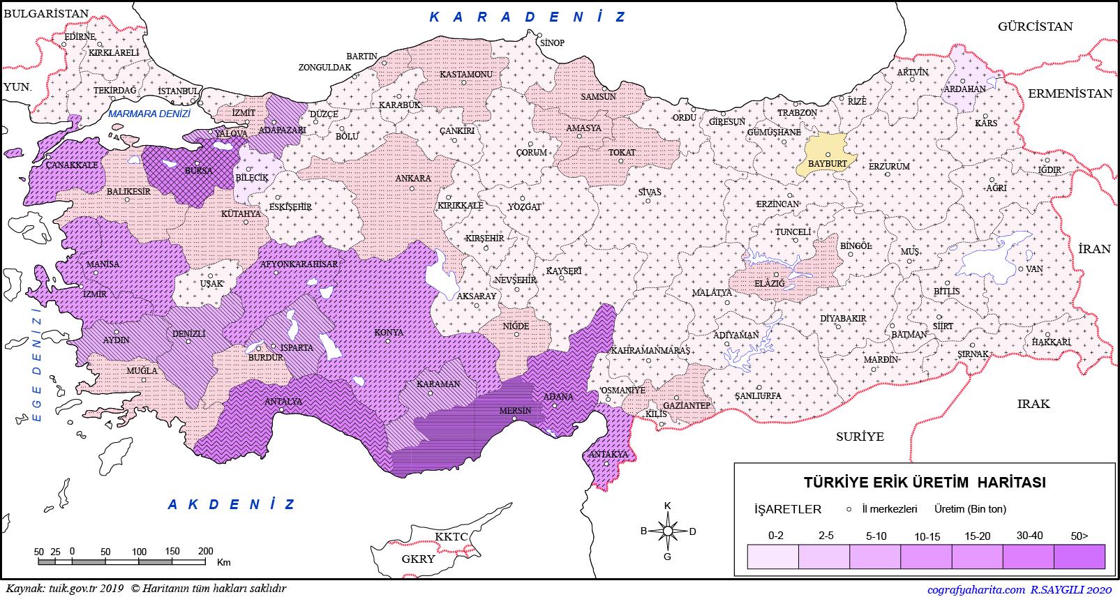 Türkiye Erik Üretim Haritası