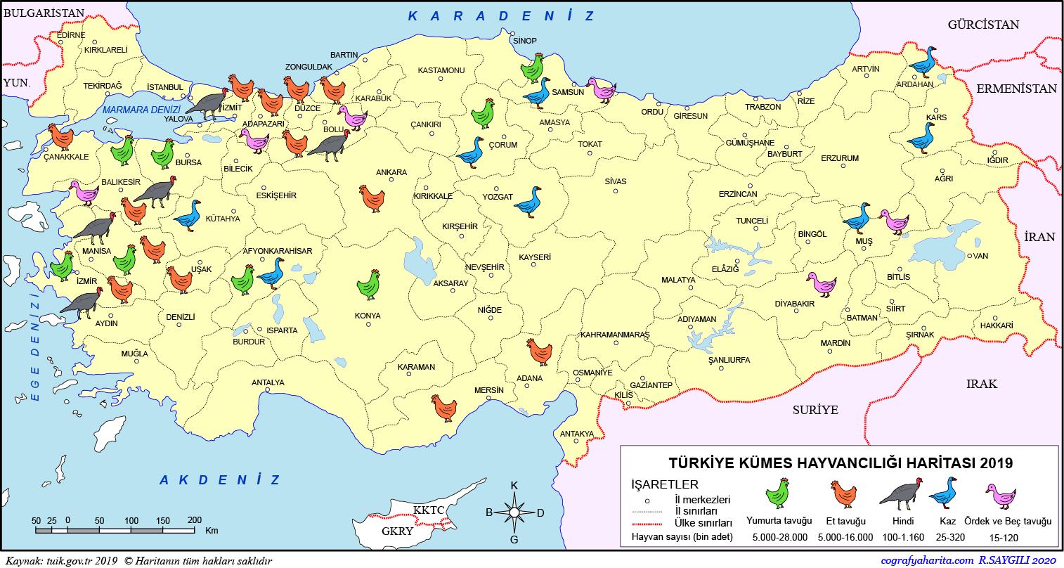Türkiye Kümes Hayvancılığı Haritası