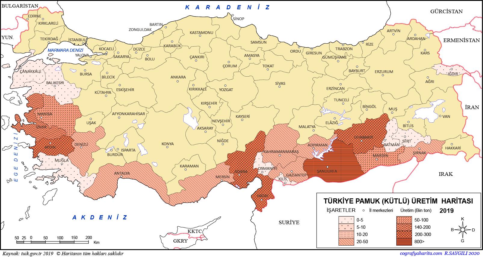 Türkiye Pamuk Üretim Haritası